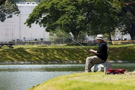 CW-Old-man-fishing